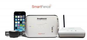 Smart System (1)